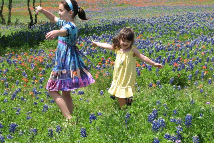 Tips for Taking Perfect Bluebonnet Photos and Where to Find the Blooms