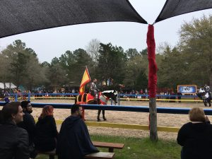 Sherwood Forest Faire Jousting
