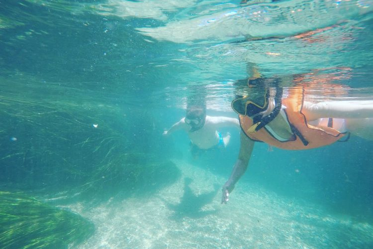 Explore the San Marcos River From the Water With Snorkel TX