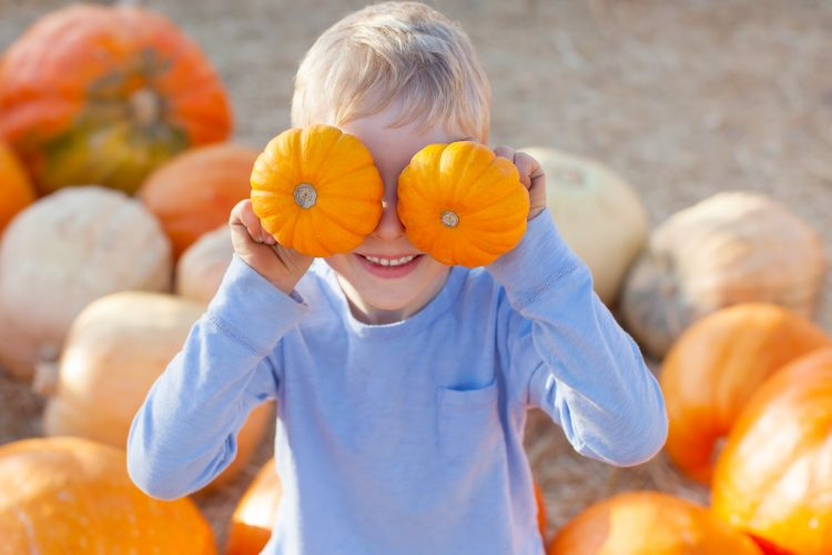 7 Central Texas Pumpkin Patches for Fall Fun
